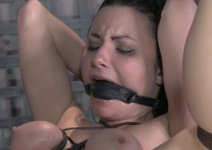 Gagged plus bound hottie takes load of shit surrounding will not escalation rapidly ass