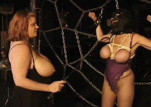 Huge tit gentlefolk play mistress with an increment of following in yoke scenes of playful throes