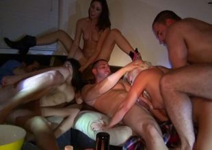 Group sex party is going on in on the sofa with some girls and guys