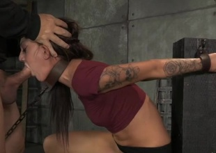 Cutie chained in the relationship of the basement gather up with mouth fucked