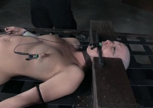 Electro pain and slow predominating pangs for a bald inclusive
